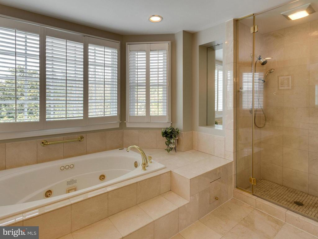 Luxurious Master Bath. - 2107 POLO POINTE DR, VIENNA