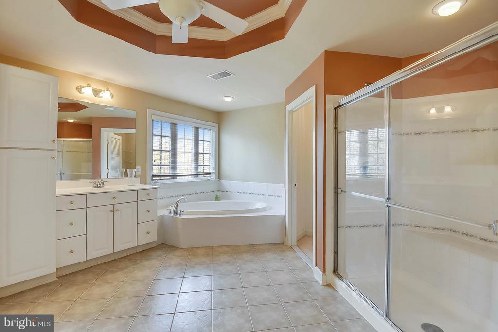 Bath (Master) with a soaking bath and shower - 42739 CEDAR RIDGE BLVD, CHANTILLY