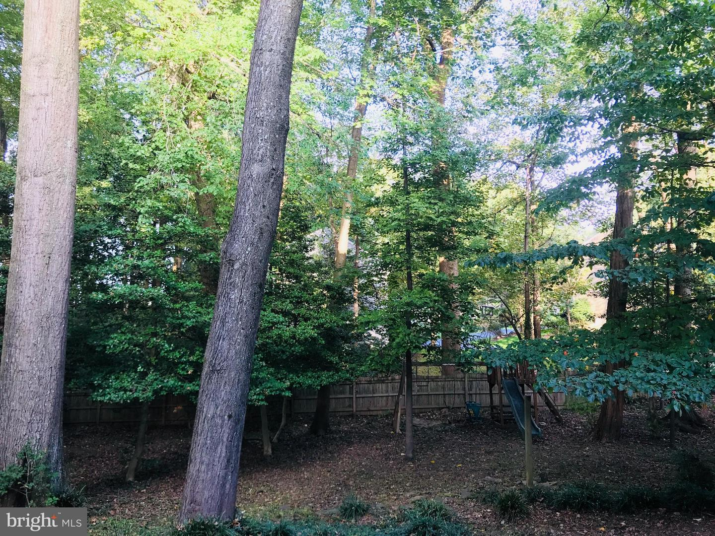 Additional photo for property listing at 9134 Ermantrude Court 9134 Ermantrude Court Vienna, Virginia 22182 United States