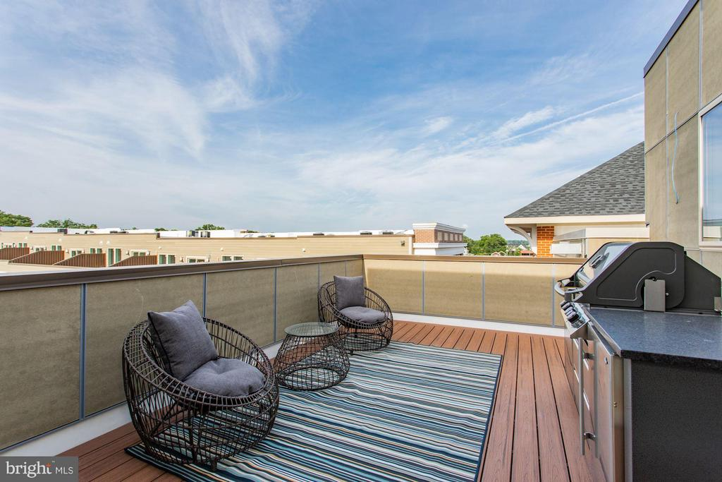 Roof-top deck  with luxury gas grill/kitchen - 702 ELDEN ST, HERNDON