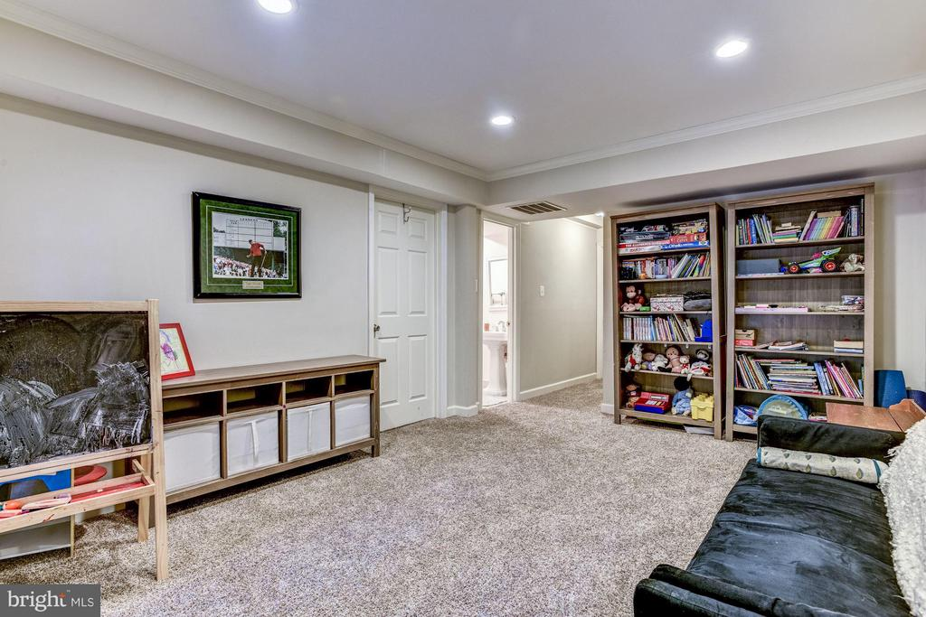 Basement Rec Room - 11715 NORTH SHORE DR, RESTON