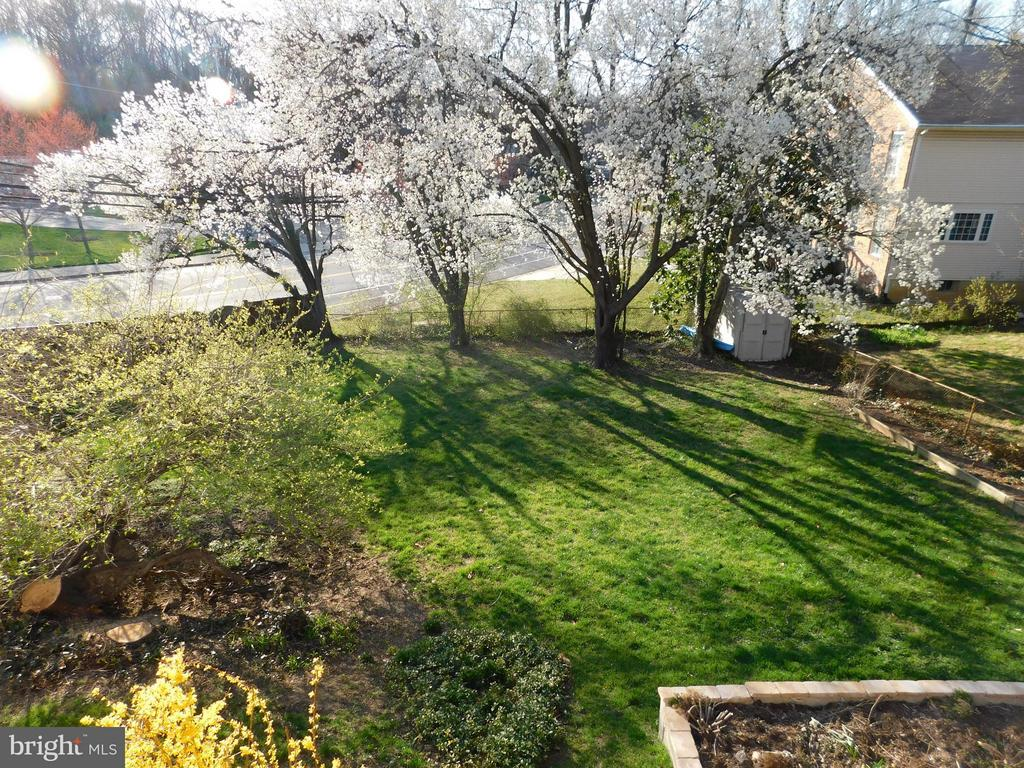 large usable fenced yard - shed, raised gardens, - 2610 MARCEY RD, ARLINGTON