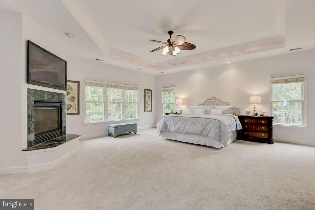 Master Suite w/Tray Ceiling  and Gas Fireplace. - 1211 RESTON AVE, HERNDON
