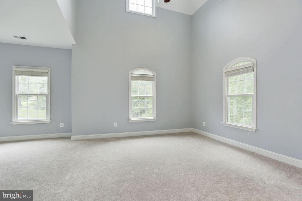 2nd Master Suite with 2-story Cathedral ceiling - 1211 RESTON AVE, HERNDON