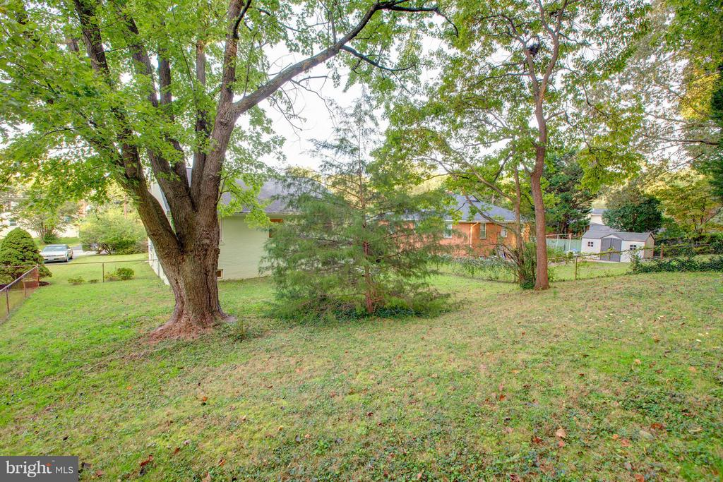 Plenty of room for children and pets to play - 3033 CRANE DR, FALLS CHURCH