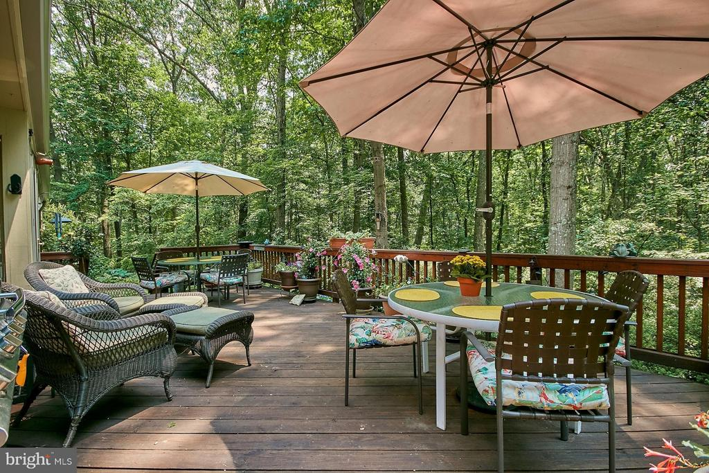 Surrounded by lush greenery - 10810 HUNTER STATION RD, VIENNA