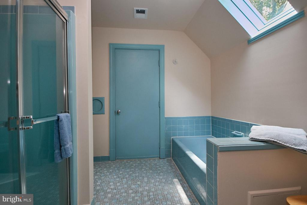 Seperate tub/shower under relaxing skylight - 10810 HUNTER STATION RD, VIENNA