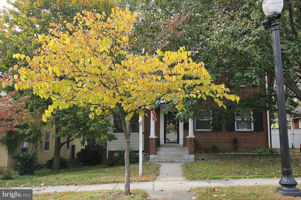 Quiet street with side walks! - 200 N CLEVELAND ST, ARLINGTON