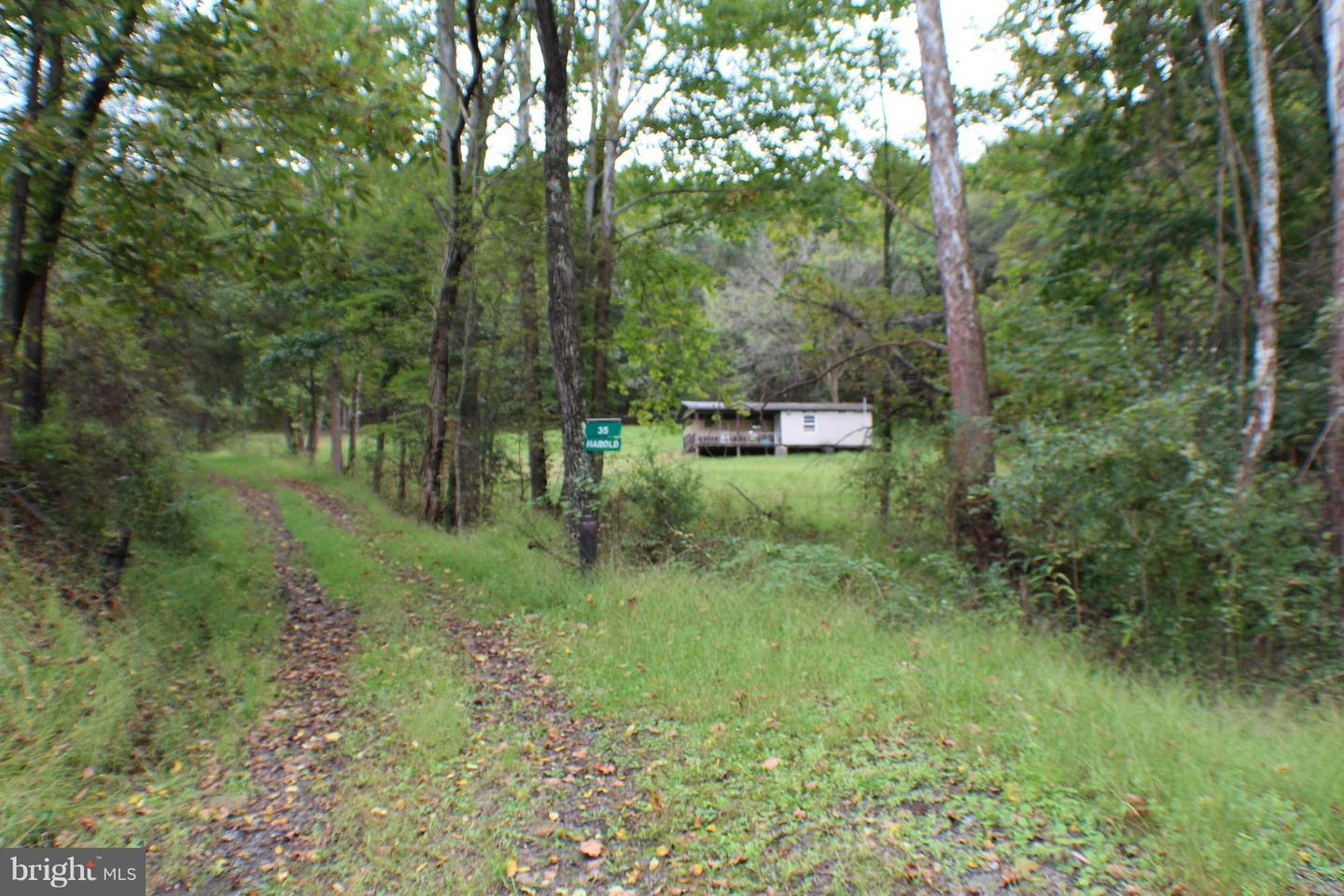 Land for Sale at 17 Acs Waterash Rd Dorcas, West Virginia 26847 United States