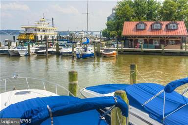 Old Town waterfront and seaport - 828 SLATERS LN #406, ALEXANDRIA