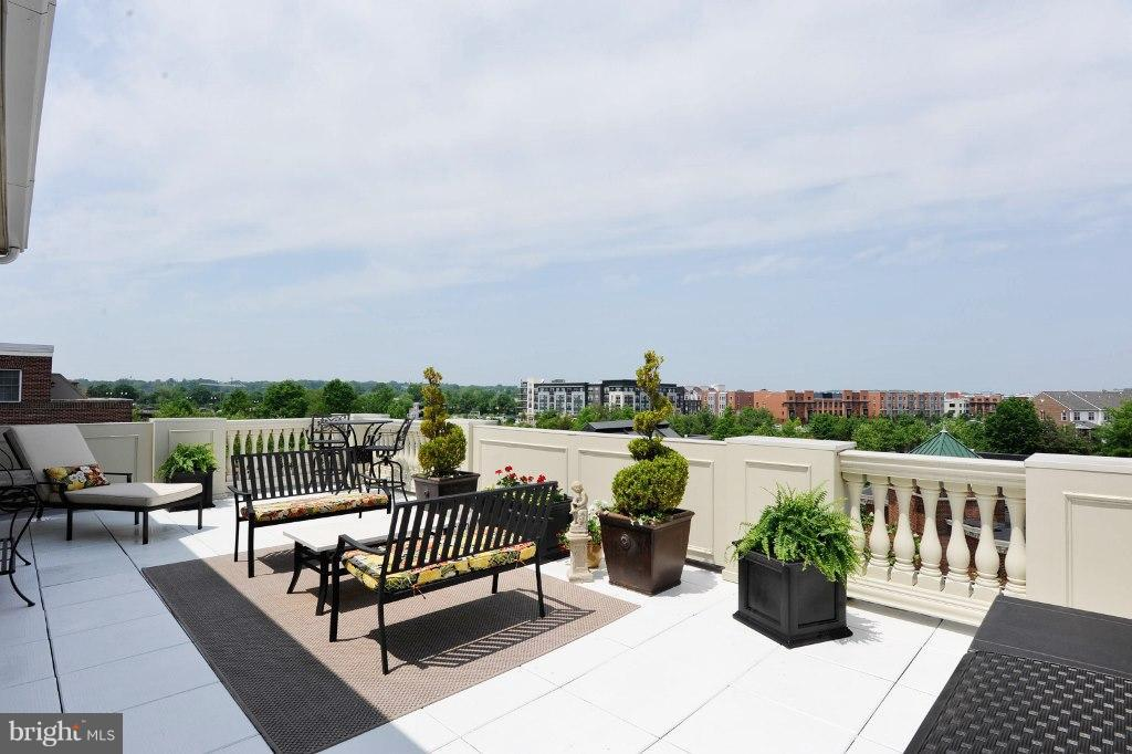 Private terrace with lovely views towards DC - 828 SLATERS LN #406, ALEXANDRIA