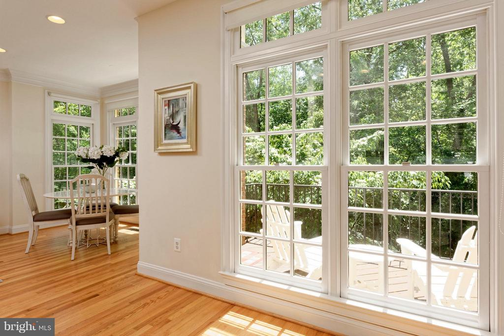 Breathtaking view of a mature white dogwood tree - 36 ALEXANDER ST, ALEXANDRIA