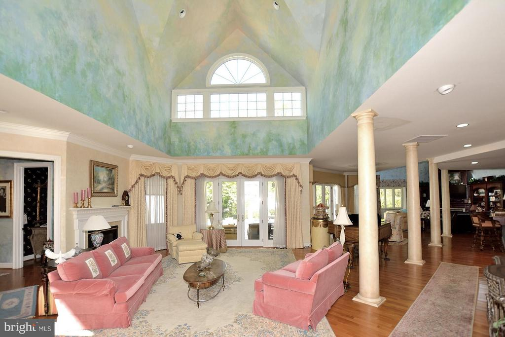 Soaring ceilings hand painted by local artist. - 3809 MILLCREEK DR, ANNANDALE