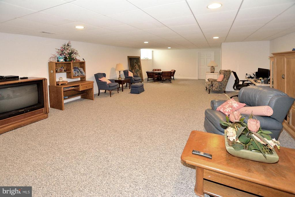 Spacious, expandable rec room - 3809 MILLCREEK DR, ANNANDALE