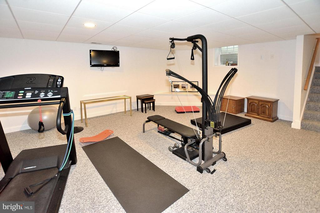 In home gym area adjacent to rec room - 3809 MILLCREEK DR, ANNANDALE