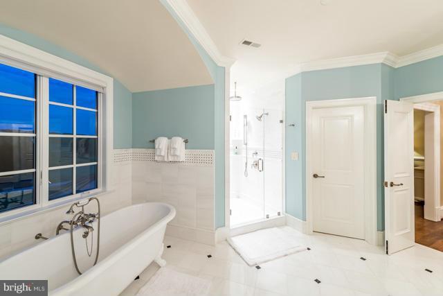 Bath (Master) - 22360 WILSON MEADOWS LN, ALDIE