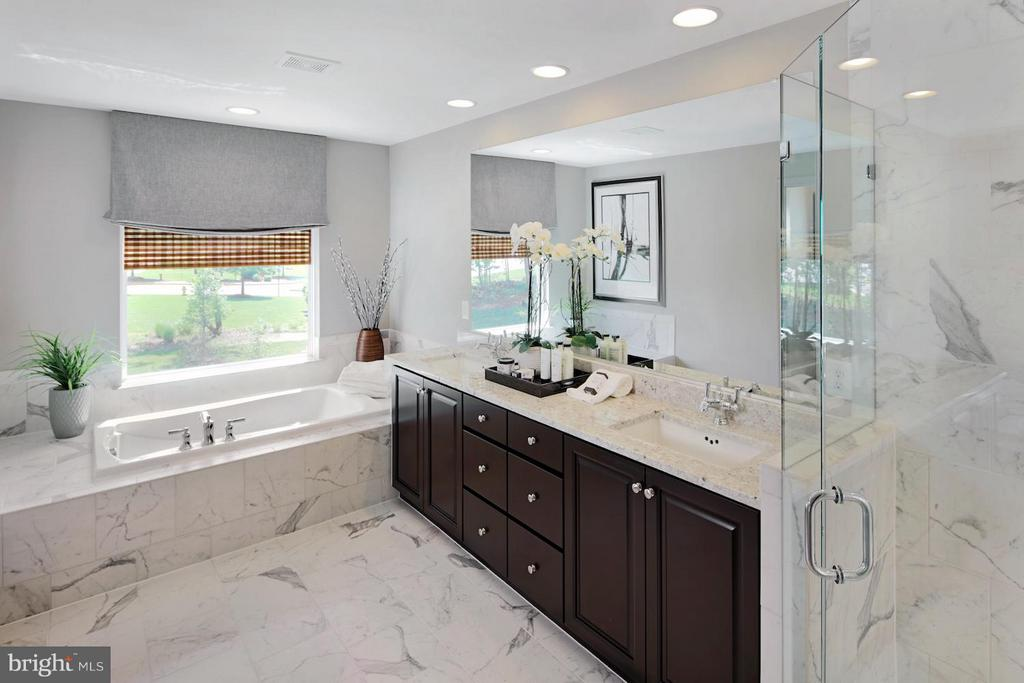 Owner's Bath - 0 BRIGHTSTAR DR, MANASSAS
