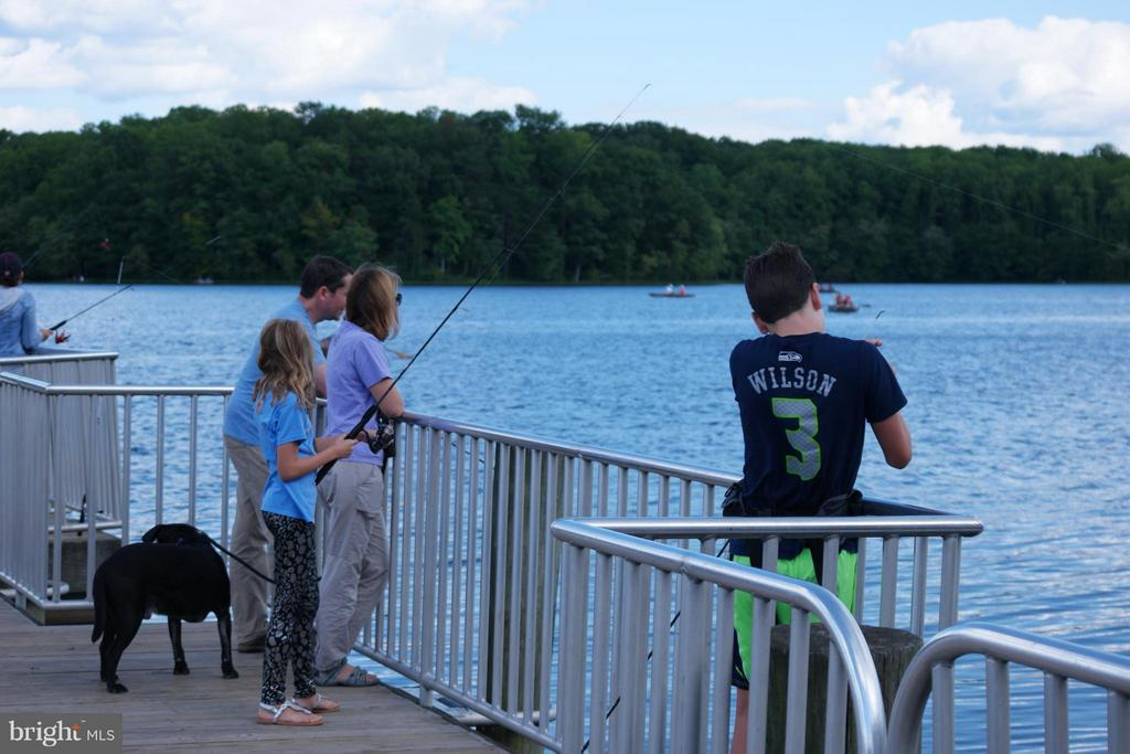 Fishing in nearby Burke Lake - 10317 BURKE LAKE RD, FAIRFAX STATION