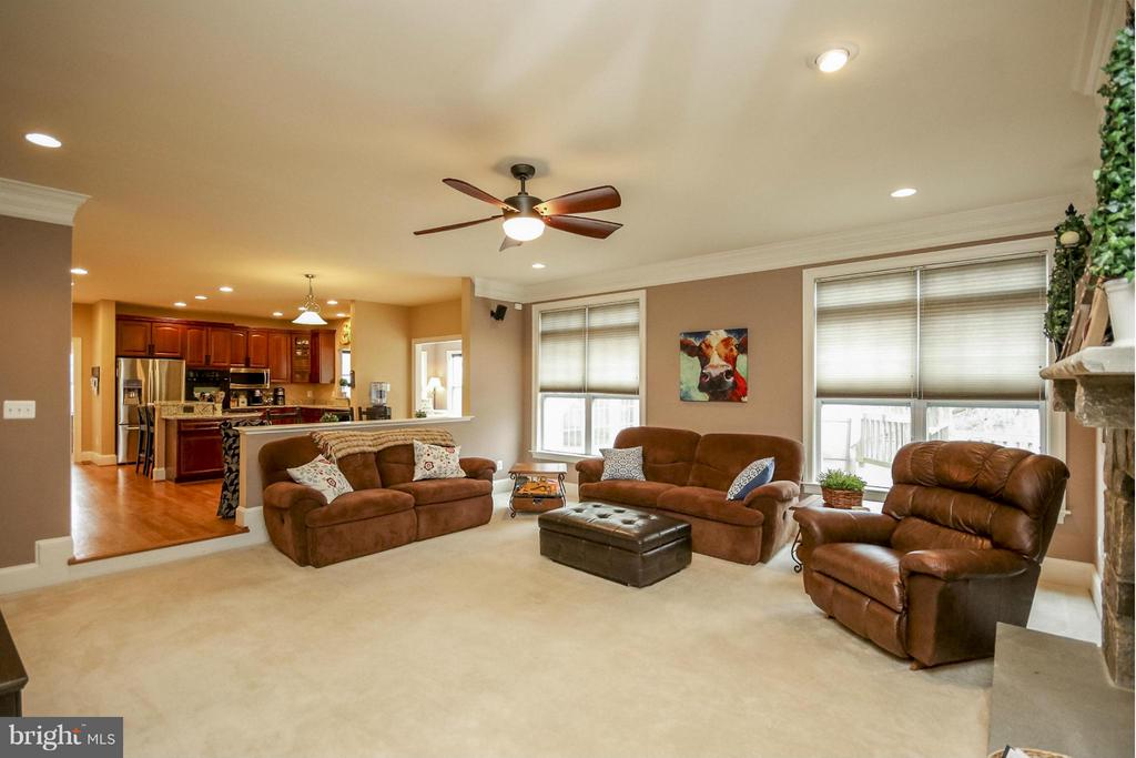 Family Room - 3308 DONDIS CREEK DR, TRIANGLE