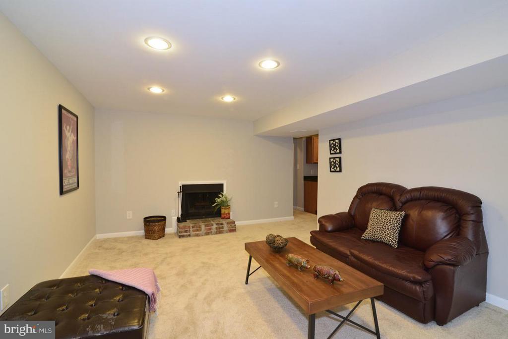 Lower Level family Room - 2259 CEDAR COVE CT, RESTON