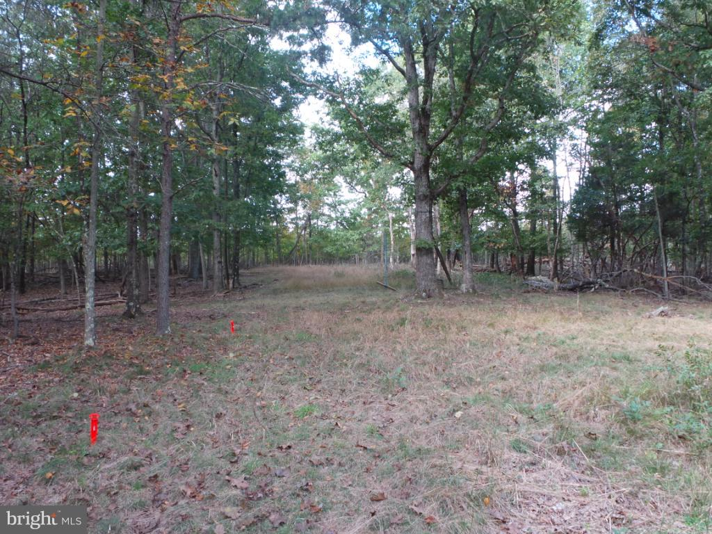 Additional photo for property listing at 1735 Holly Hill Drive Berkeley Springs, West Virginia 25411 United States