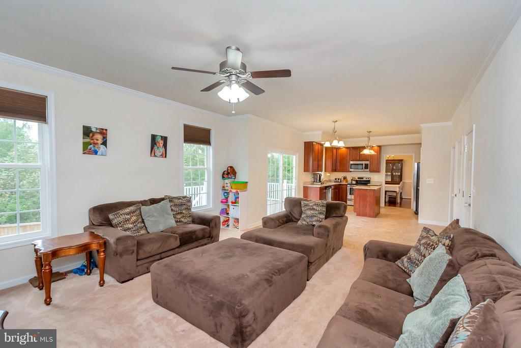 Family Room - 6754 THORNBROOK LN, SPOTSYLVANIA
