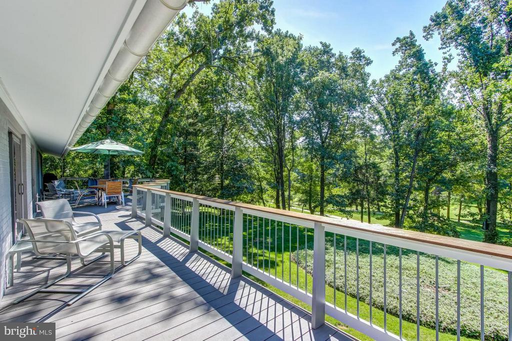 62 ft Deck has amazing views - 1706 PUTTER LN, RESTON