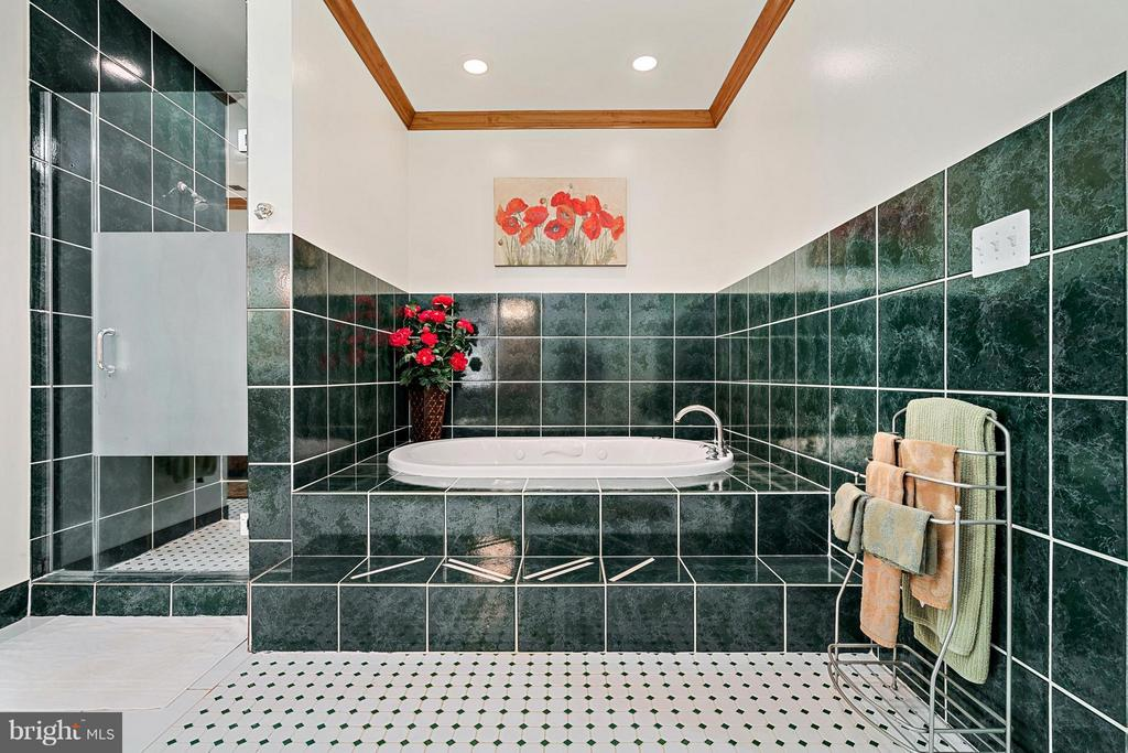 Separate Shower and whirlpool Tub - 38581 DAYMONT LN, WATERFORD