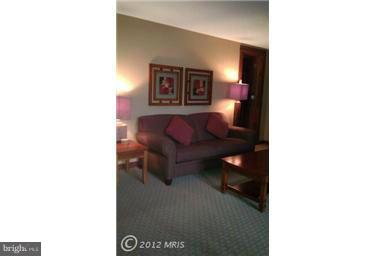 Additional photo for property listing at 565 Glendale Rd #312  Oakland, Maryland 21550 United States
