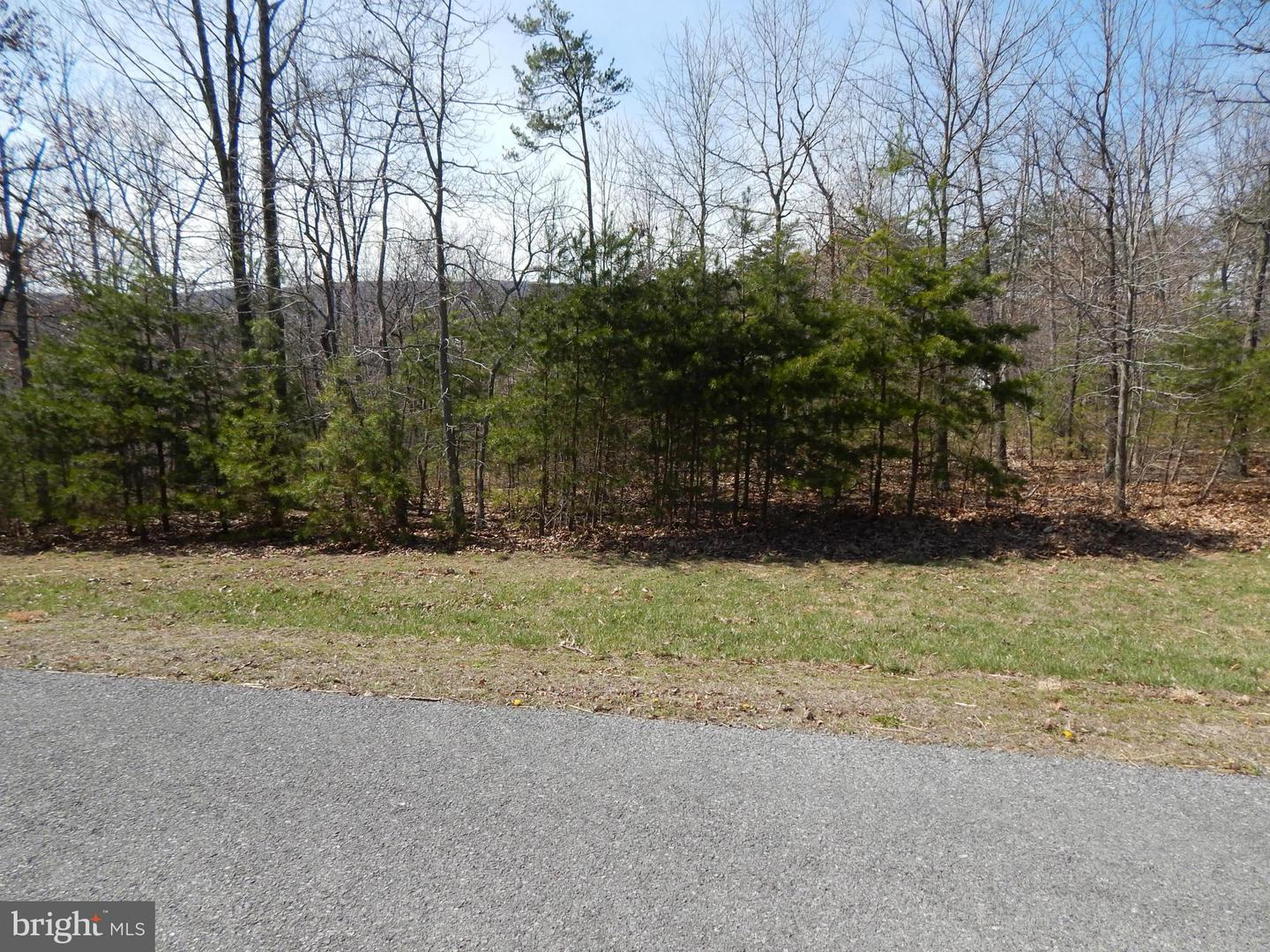 Land for Sale at 4 Cielo Lane Berkeley Springs, West Virginia 25411 United States