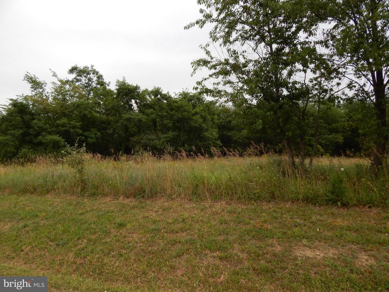 Land for Sale at 3 Ashton Circle Berkeley Springs, West Virginia 25411 United States