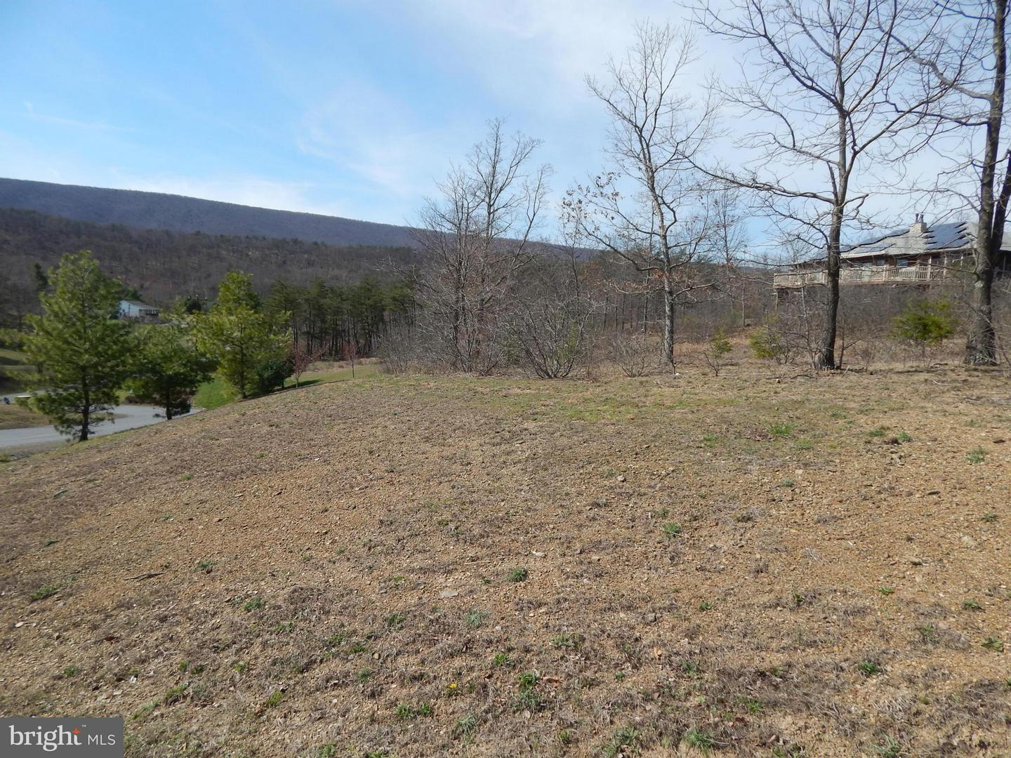 Land for Sale at 1 Cielo Lane Berkeley Springs, West Virginia 25411 United States