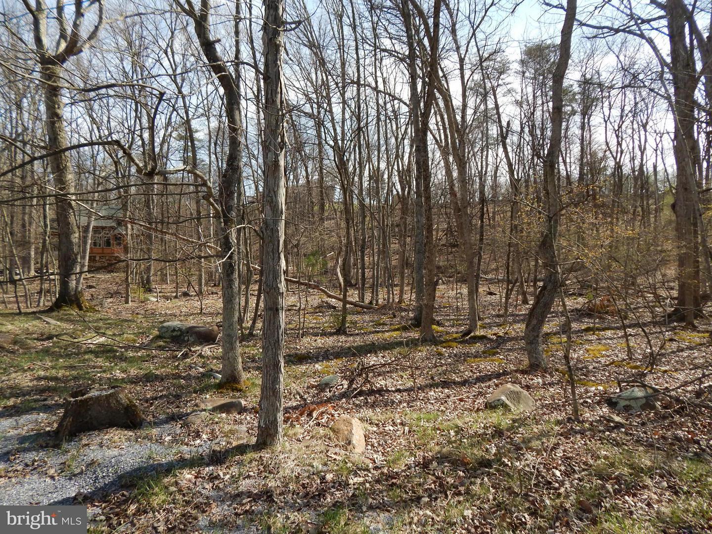 Land for Sale at 52 Indian Run Lane Berkeley Springs, West Virginia 25411 United States