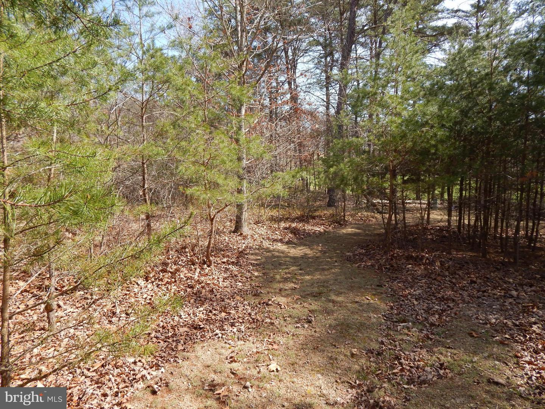 Land for Sale at 31 Megans Terrace Berkeley Springs, West Virginia 25411 United States