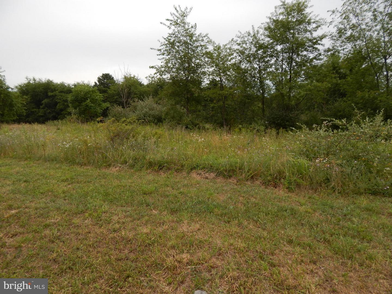Land for Sale at 2 Ashton Circle Berkeley Springs, West Virginia 25411 United States