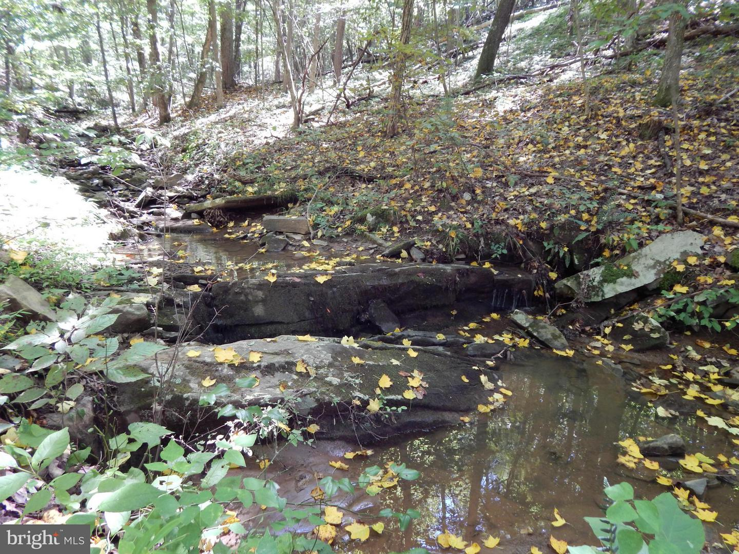 Land for Sale at Mountain Run Rd Berkeley Springs, West Virginia 25411 United States