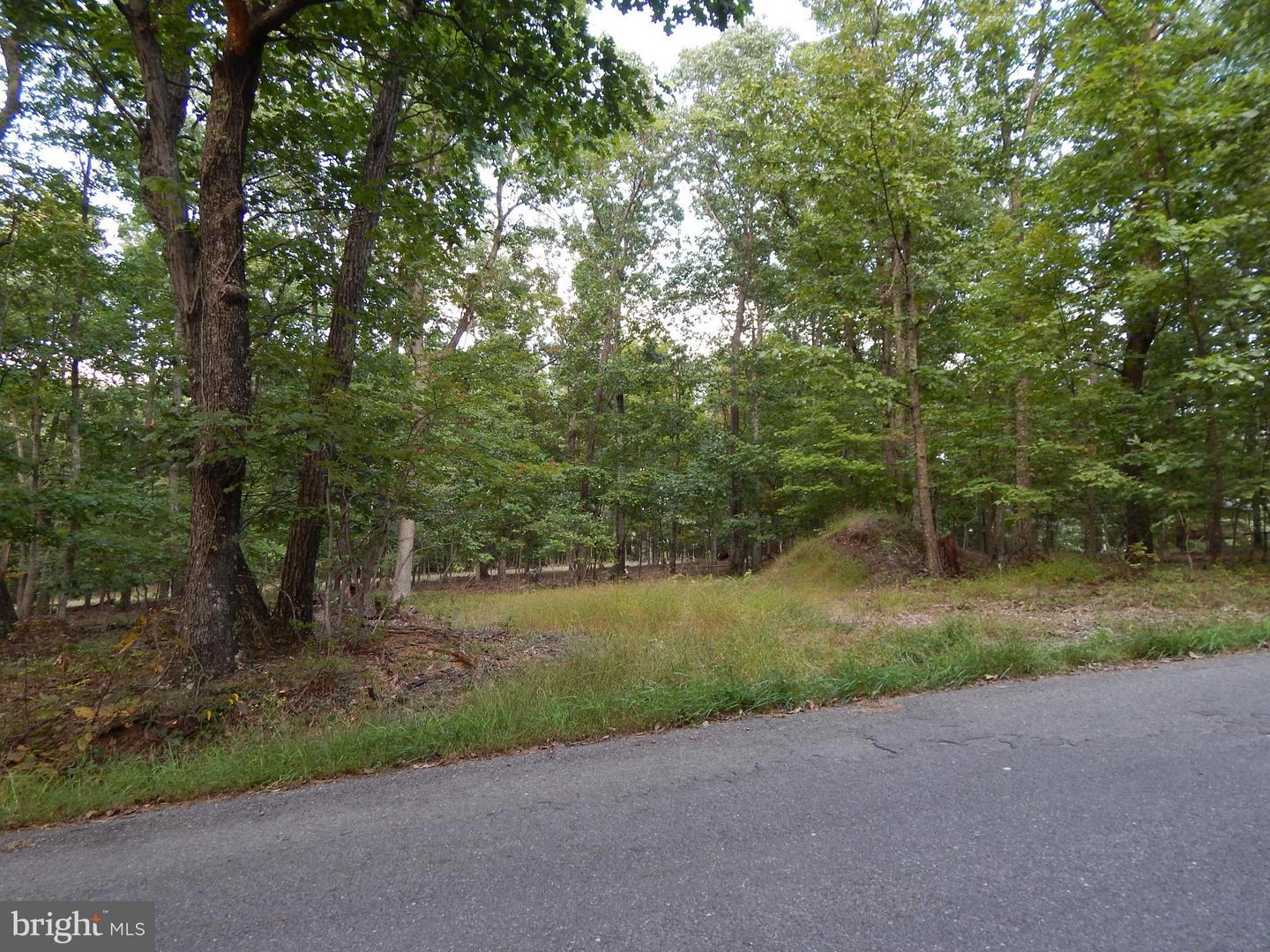 Land for Sale at Tabor Road Berkeley Springs, West Virginia 25411 United States