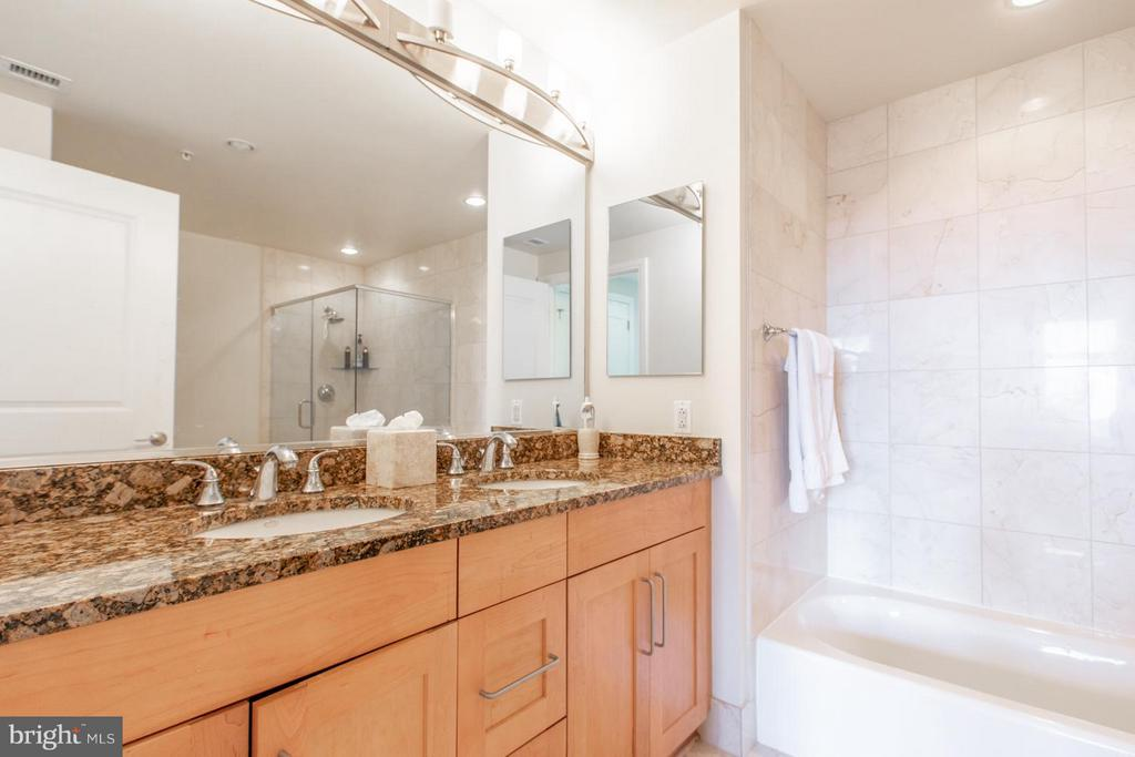 Bath (Master) - 8220 CRESTWOOD HEIGHTS DR #1209, MCLEAN