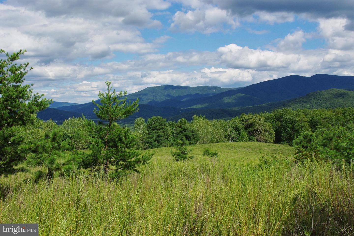 Land for Sale at 0 Pine Grove Rd Stanley, Virginia 22851 United States