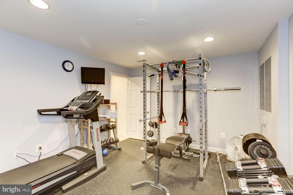 Exercise room - 43046 CASTLEBAR ST, CHANTILLY