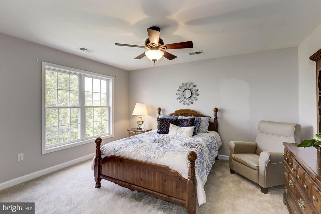 Large guest room - 43046 CASTLEBAR ST, CHANTILLY