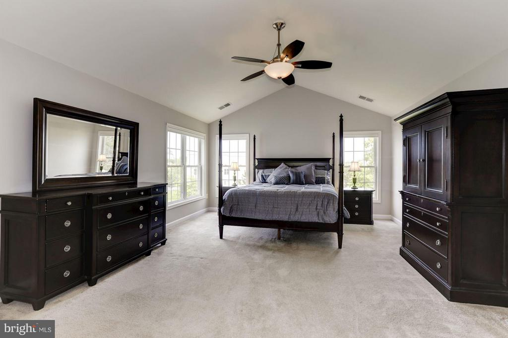 Master Suite - 43046 CASTLEBAR ST, CHANTILLY