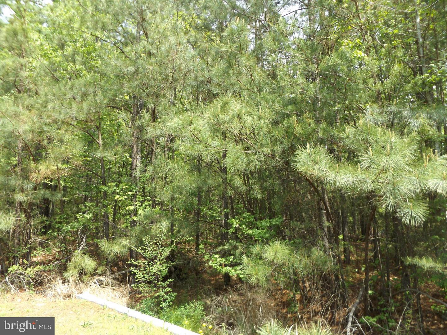 Photo of home for sale at Lot #7 13Th, Colonial Beach VA