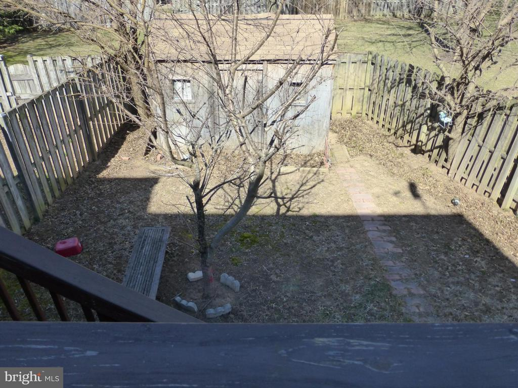 Large Fenced Back Yard with Custom Shed - 333 BRIDLE CREST SQ NE, LEESBURG