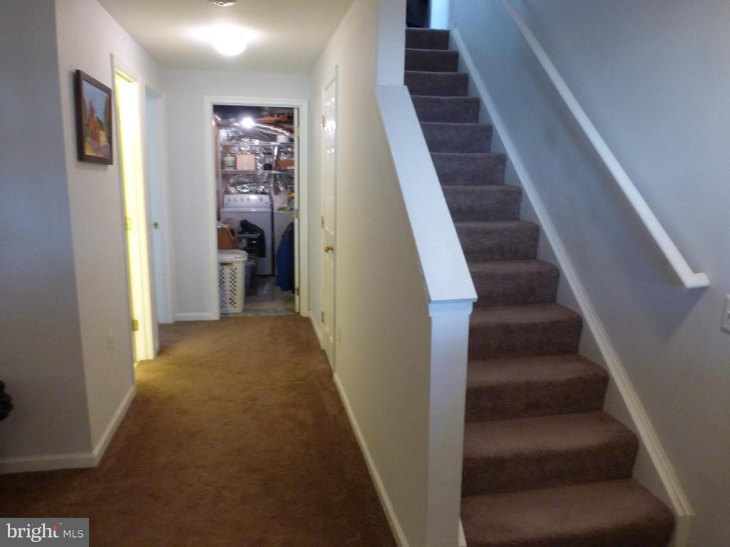 Stairs to Lower Level - 333 BRIDLE CREST SQ NE, LEESBURG