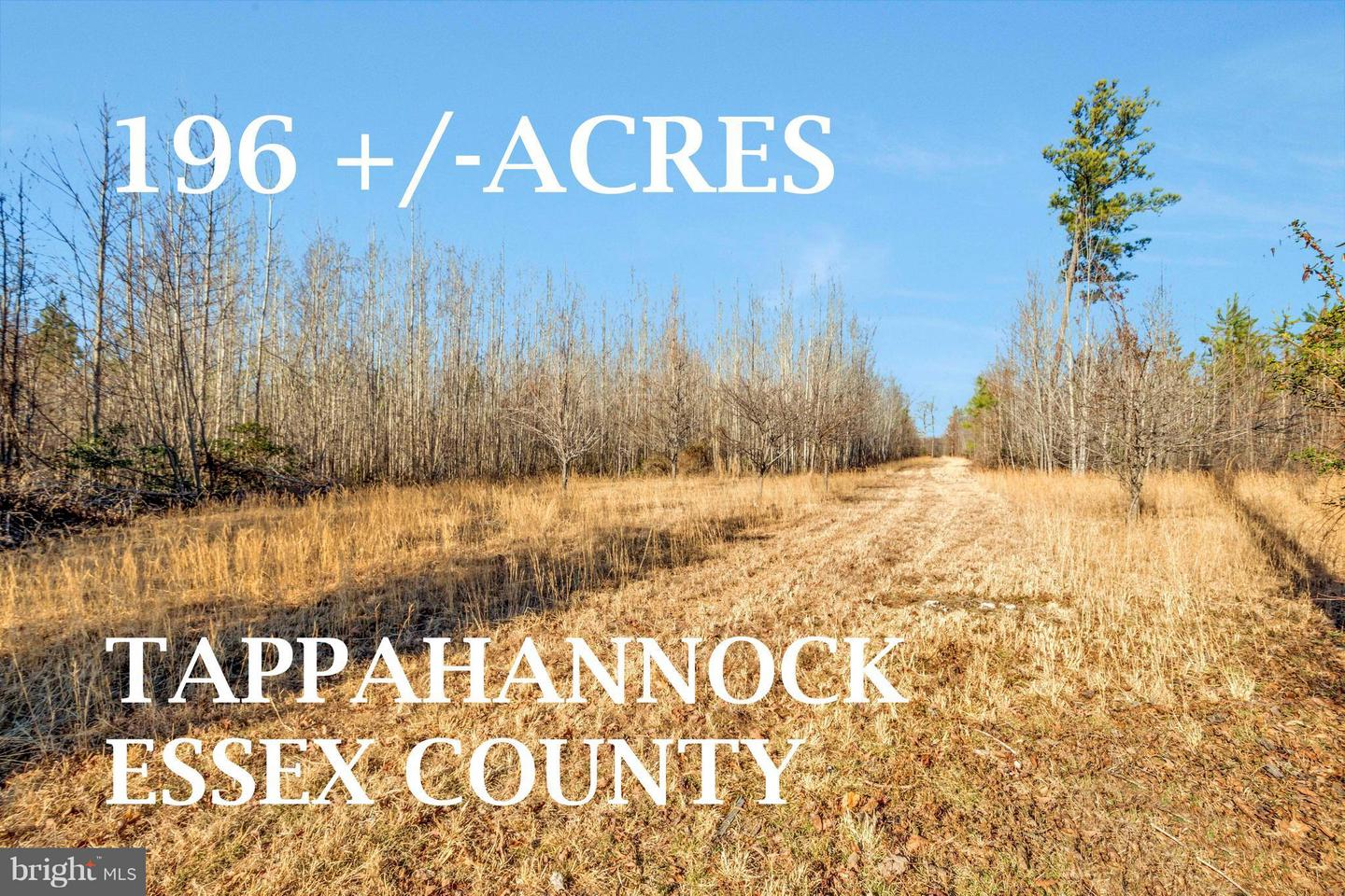 Land for Sale at Doves Nest Rd Tappahannock, Virginia 22560 United States