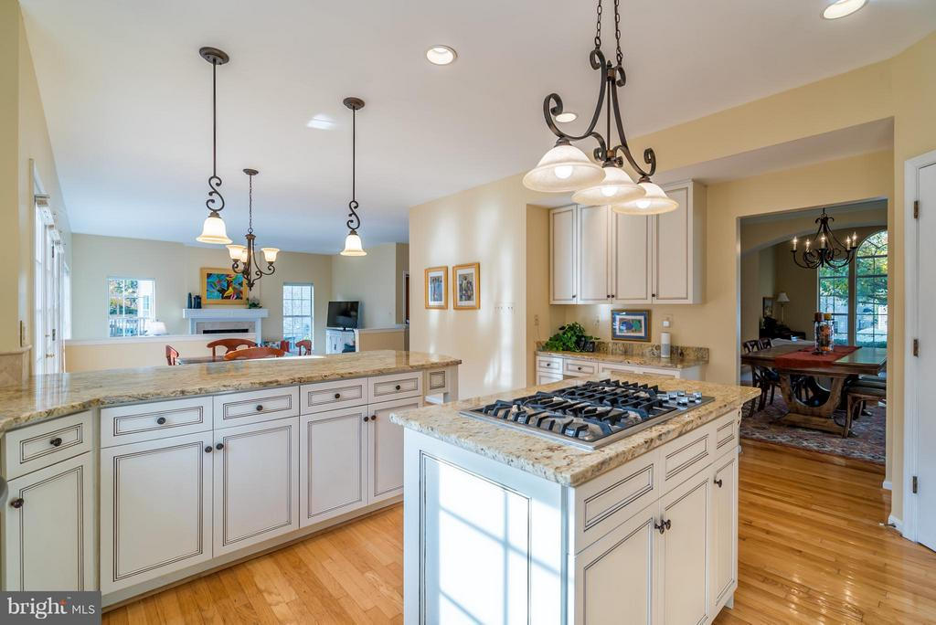 Could you imagine yourself in this Kitchen? - 20660 PARKSIDE CIR, STERLING
