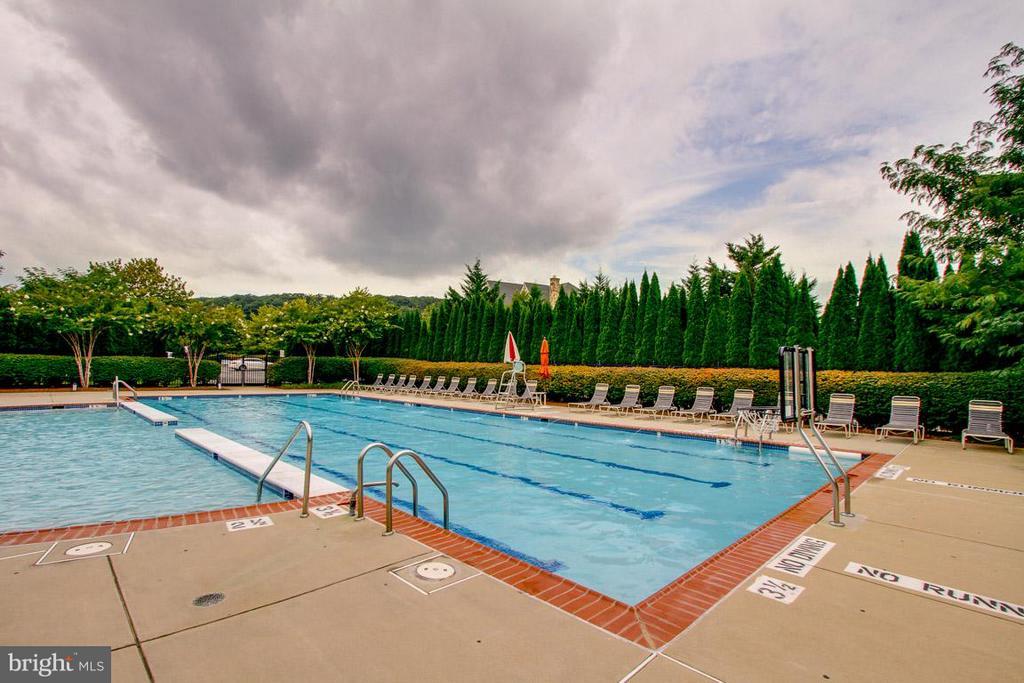 Community pool - 41707 PUTTERS GREEN CT, LEESBURG