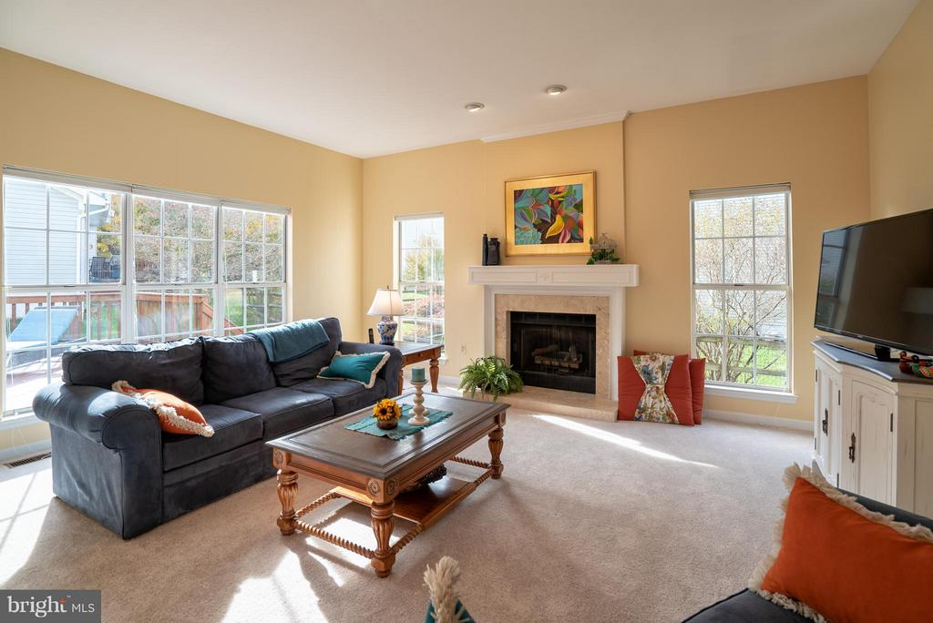 Gas Fireplace | Tons of Natural Light Family Room - 20660 PARKSIDE CIR, STERLING