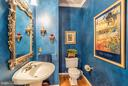 Powder Room on Main Level - 20660 PARKSIDE CIR, STERLING